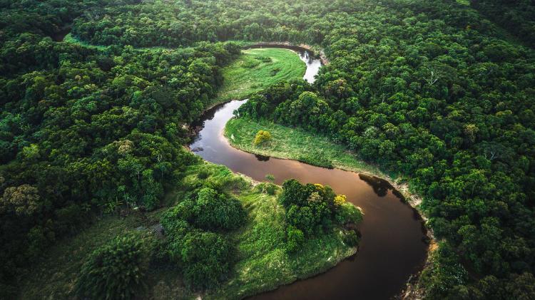 Paisaje del Bosque Atlantico