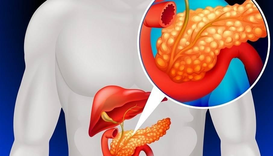 Esta sencilla solución limpia los riñones, el páncreas y regula la presión..