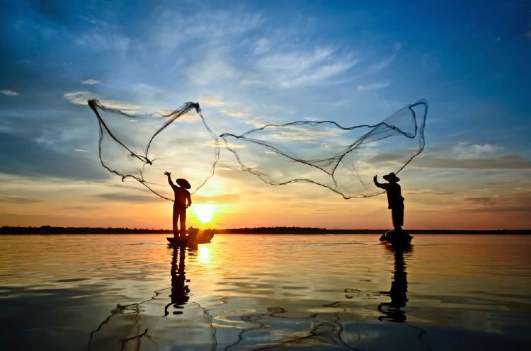 pescado pesca
