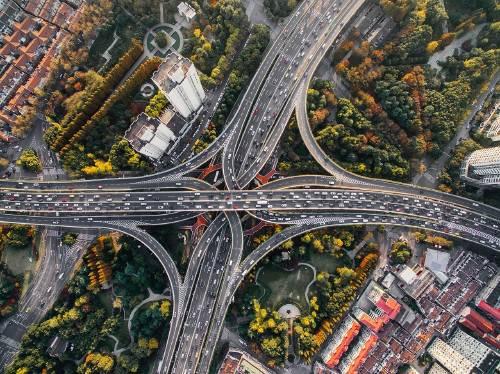 Cómo incluir árboles en las zonas urbanas de manera eficiente