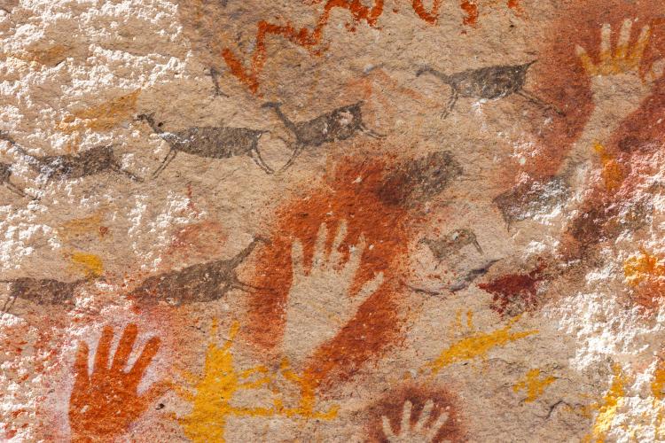 Guanacos Cueva de las Manos © Florian von der Fecht