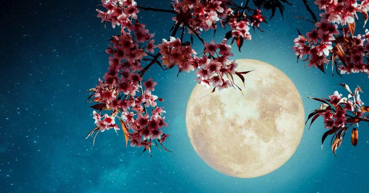 Luna llena de las flores: ¿qué significa y cómo nos afectará?
