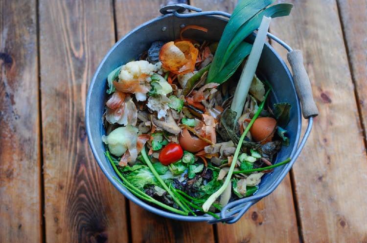 Residuos orgánicos en un balde