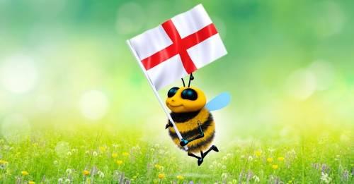 Gran Bretaña prohíbe los pesticidas que exterminan a las abejas
