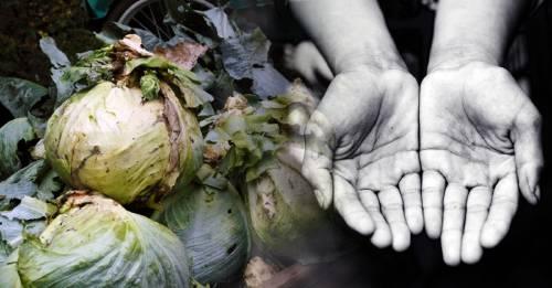 Un tercio de la comida que se produce en el mundo termina en la basura
