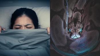Qué significa soñar con viboras