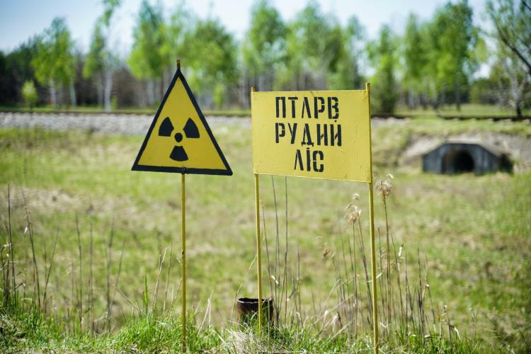 chernobil radiación