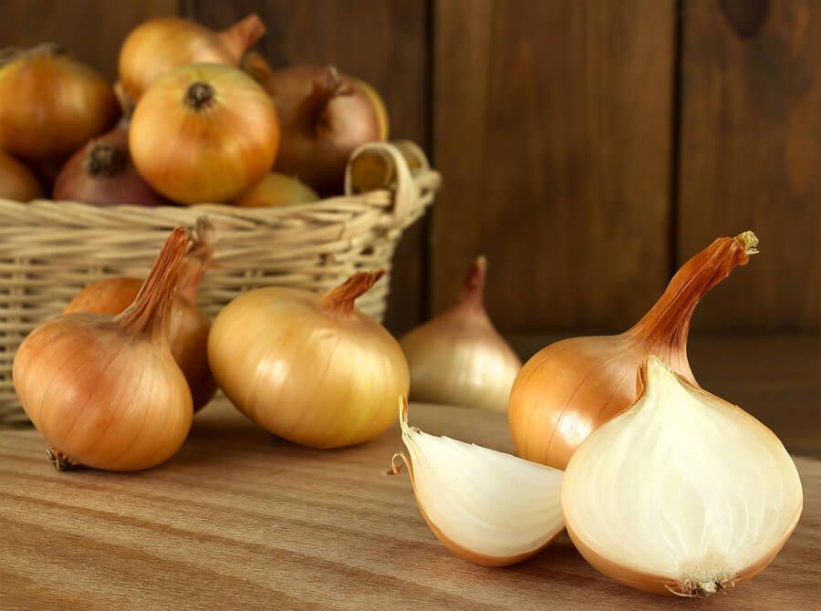 ¿Qué beneficios se obtienen al comer cebolla con regularidad?
