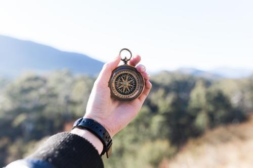 Conoce la técnica para enraizar tu propósito y encontrar el sentido de tu vida