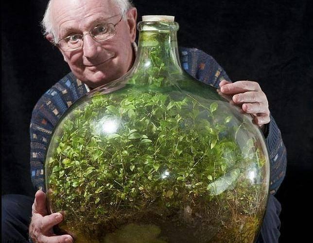 Jardin en botella