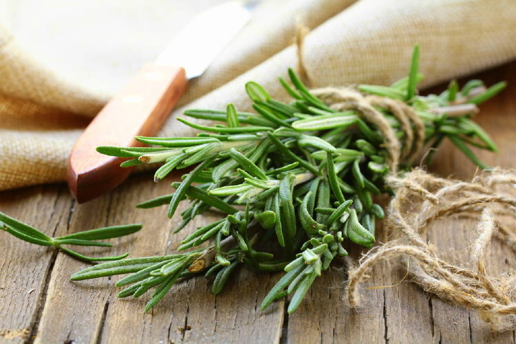 Better known in gastronomy, rosemary works as a natural anti-stress, since it has anxiolytic properties.