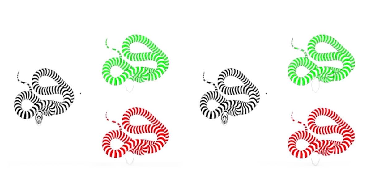 Estas son las mejores ilusiones ópticas que verás este año