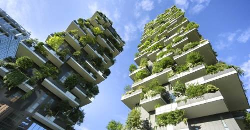 Conoce los mejores edificios sustentables