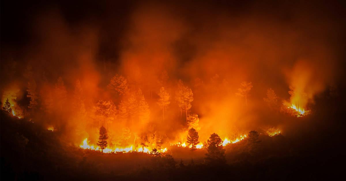 """Los incendios en la Amazonia crean """"nubes de fuego"""" sobre el Atlántico"""