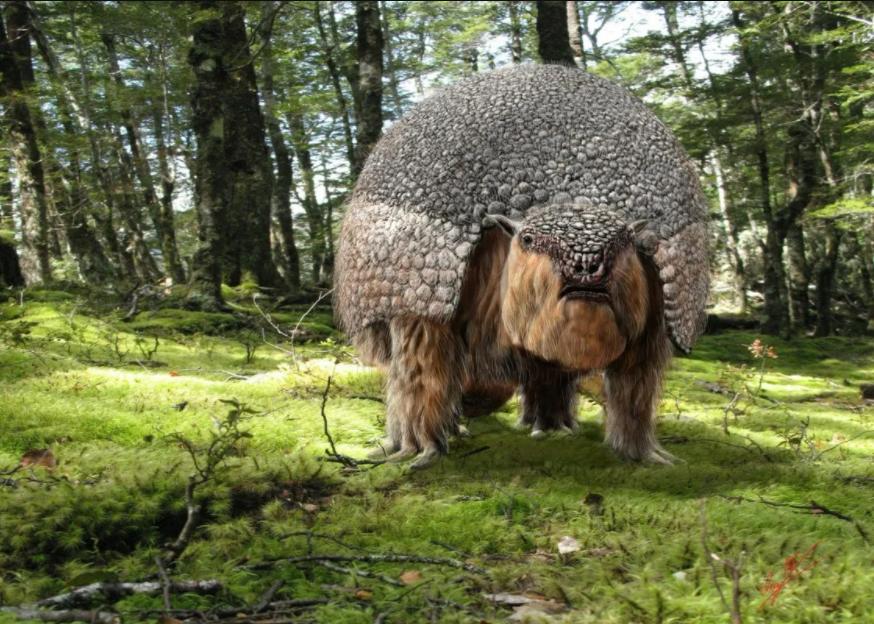 Antropólogos atribuyen a humanos la extinción de la megafauna de Sudamérica
