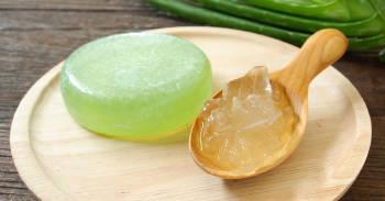 Cómo hacer champú natural solido de Aloe Vera