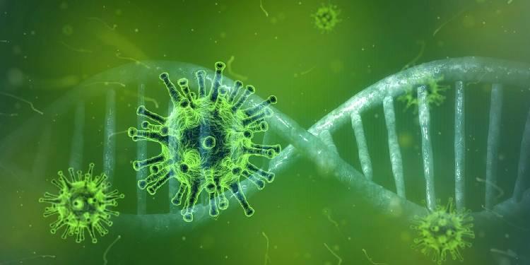 coronavirus-4833754_1280 (1)