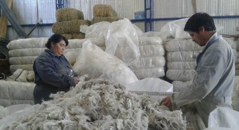 Mohair, es una fibra larga y lisa utilizada en suéteres, sombreros y otros accesorios, proviene de las cabras de angora