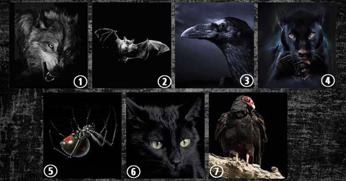 ¿Que animal te atrae más? El test mental que revela el lado oscuro oculto