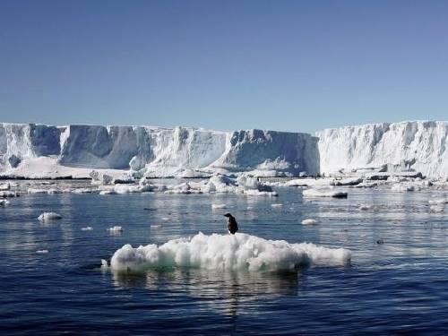 La pesadilla se hizo realidad: un enorme pedazo de la Antártida está a insta..