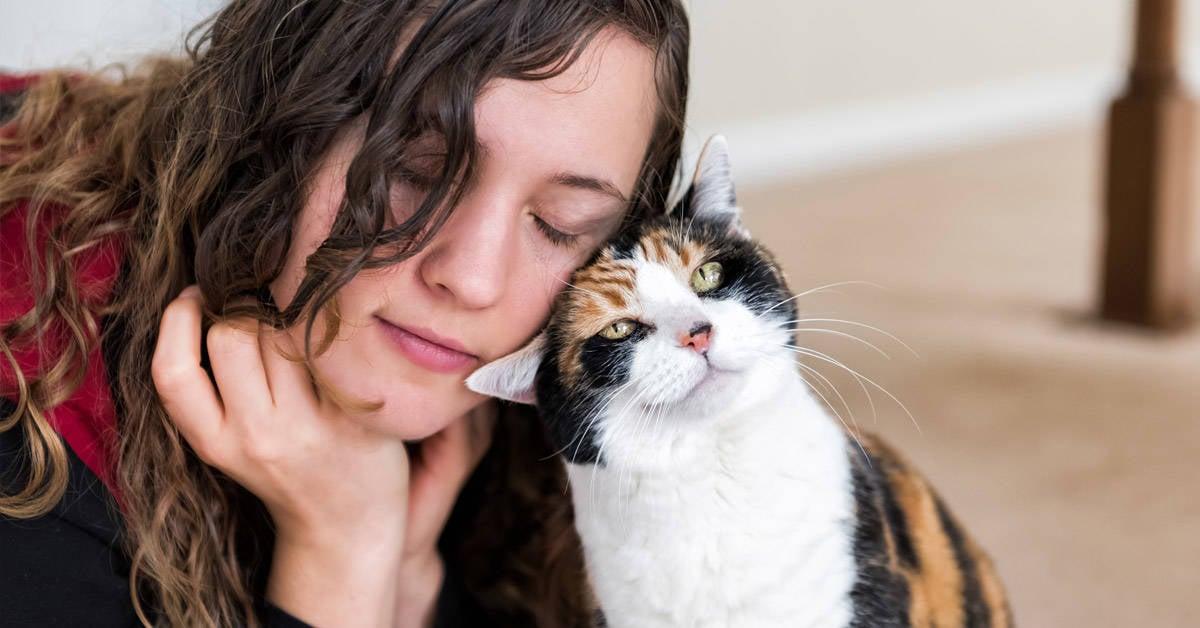 Confirmado: los gatos reflejan la personalidad de sus dueños