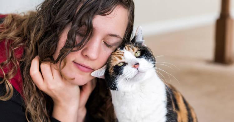 gatos-reflejan-personalidad-dueño