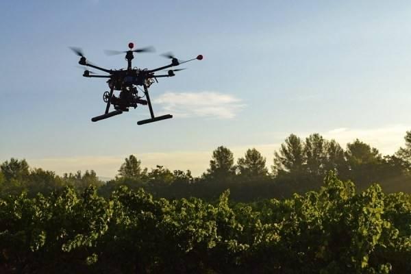 Un ejército de drones repoblará los bosques de un país asiático