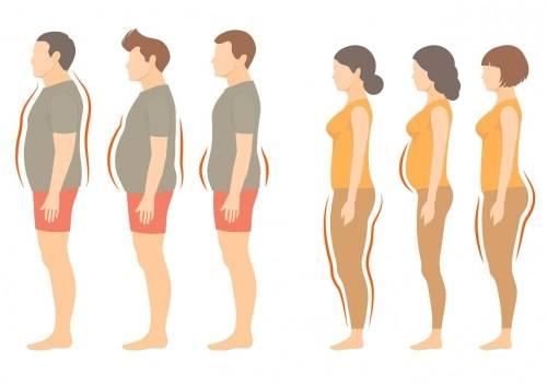 Descubre la dieta y forma de alimentación ideales para ti según tu tipo meta..