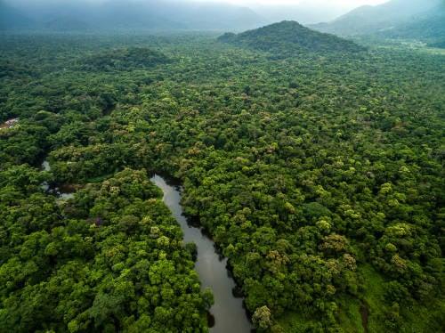Un innovador acuerdo reconoce el valor económico de la lluvia amazónica