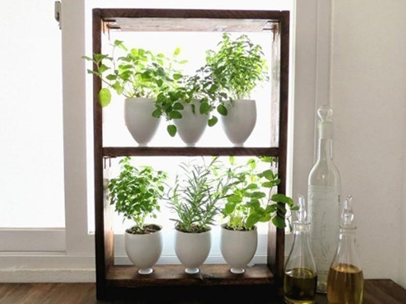 C mo hacer un peque o jard n arom tico vertical paso a paso for Como construir un jardin vertical paso a paso