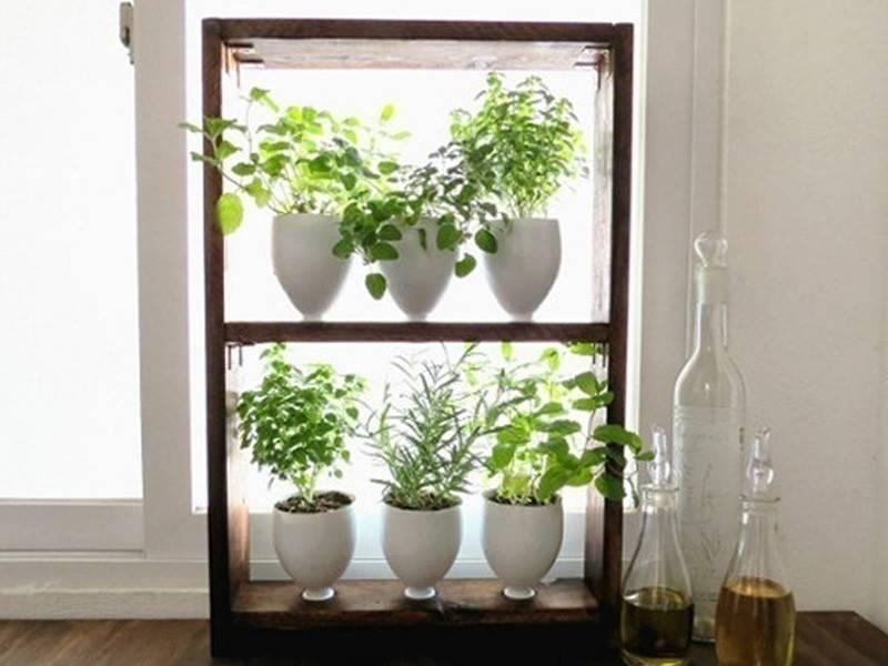 Cómo hacer un pequeño jardín aromático vertical paso a paso