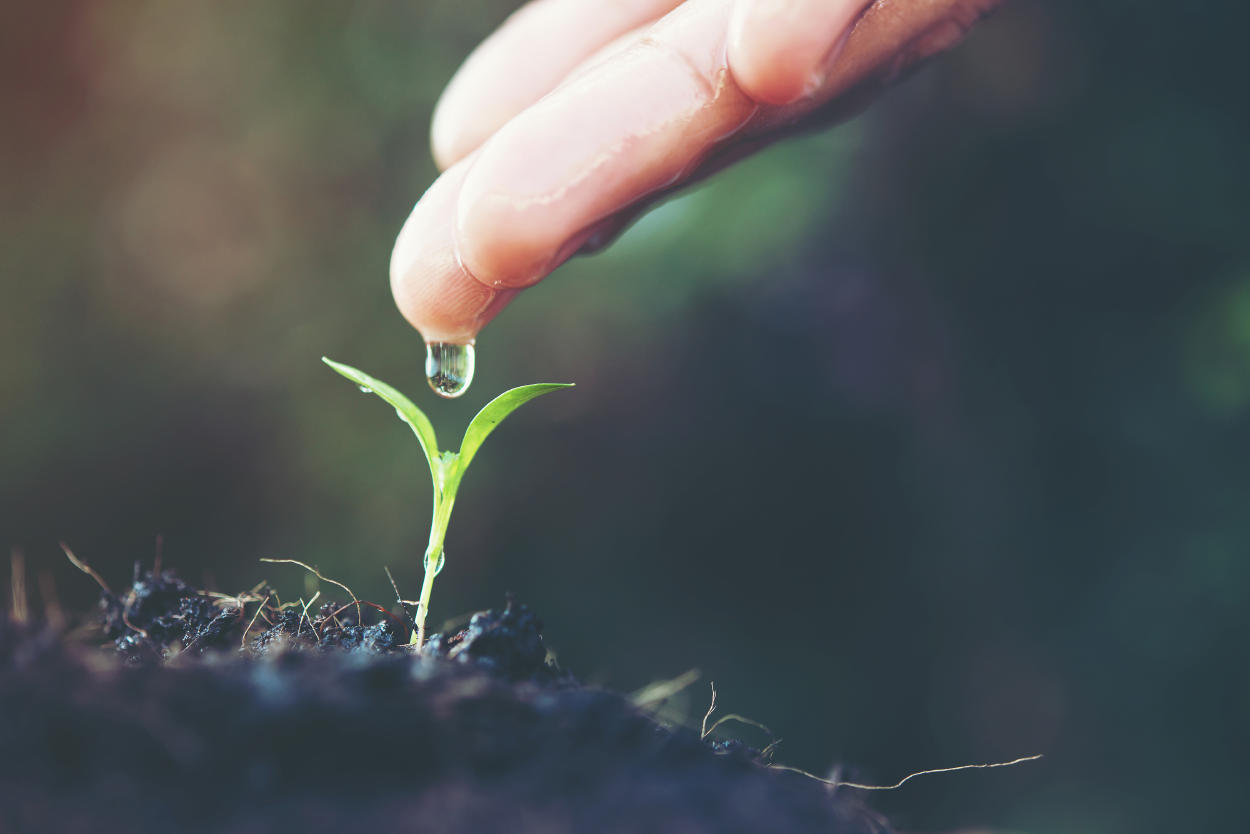 Crean agua en polvo, una nueva tecnología de sostenibilidad