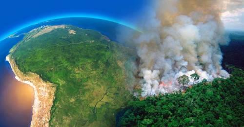 10 formas de proteger el Amazonas aunque no estés allí