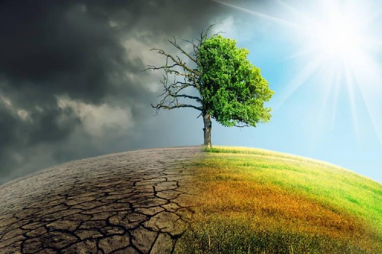 ambiente cambio climatico