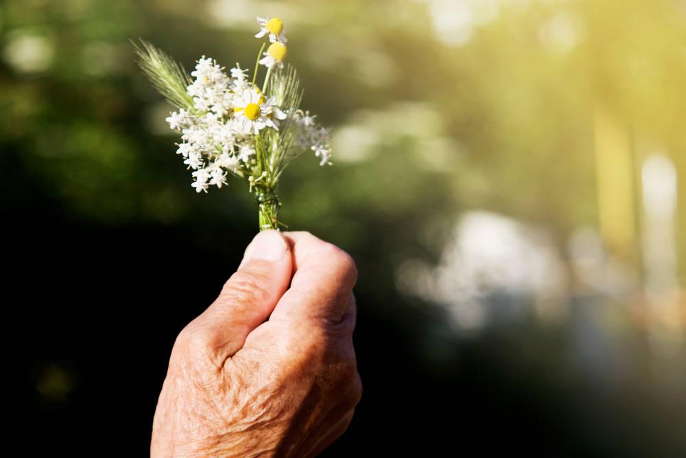 En redes sociales piden ayuda para este abuelito que vende flores