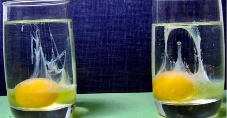 huevo en un vaso de agua