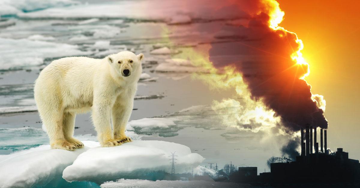 Calentamiento global: causas, consecuencias y posibilidades | Bioguia