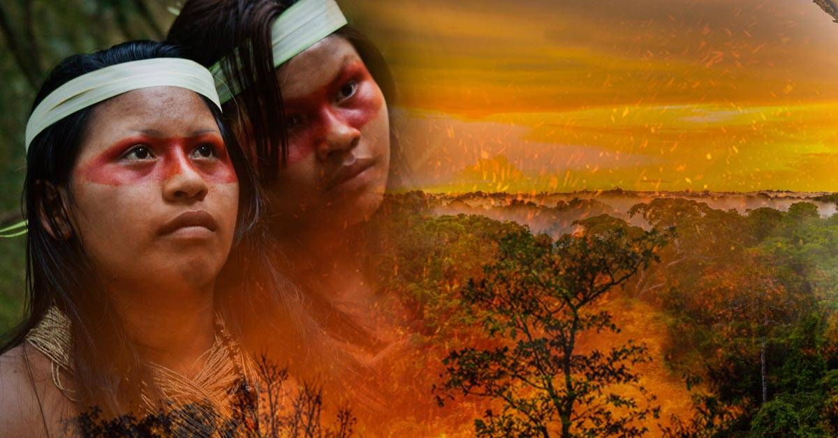Imágenes impactantes muestran el desastre en el Amazonas