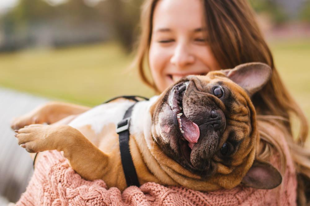 Demuestran que la compañía de un perro alarga la vida