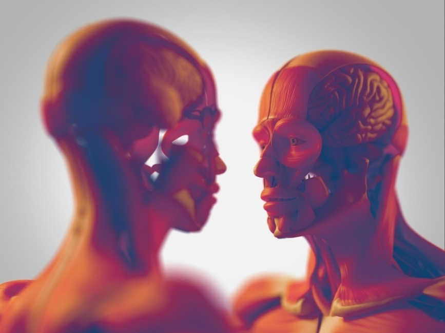 cerebros enamorados