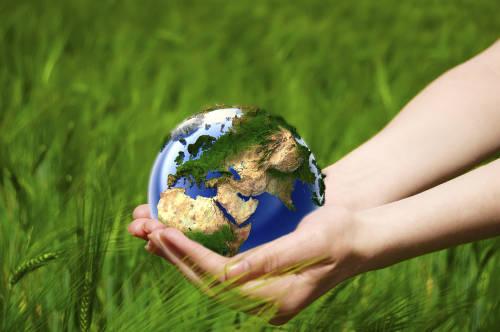 2021-2030: la nueva década de las Naciones Unidas para la Restauración de los Ec