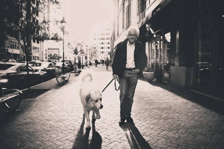 Pasear al perro como una solución al sedentarismo