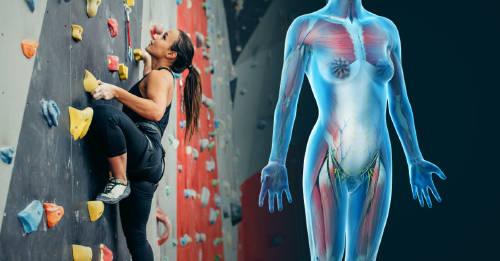5 deportes que tienen excelentes beneficios para ti y debes probar