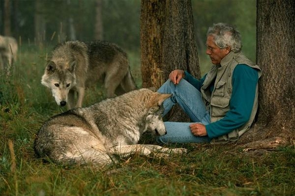 Living-With-Wolves-3
