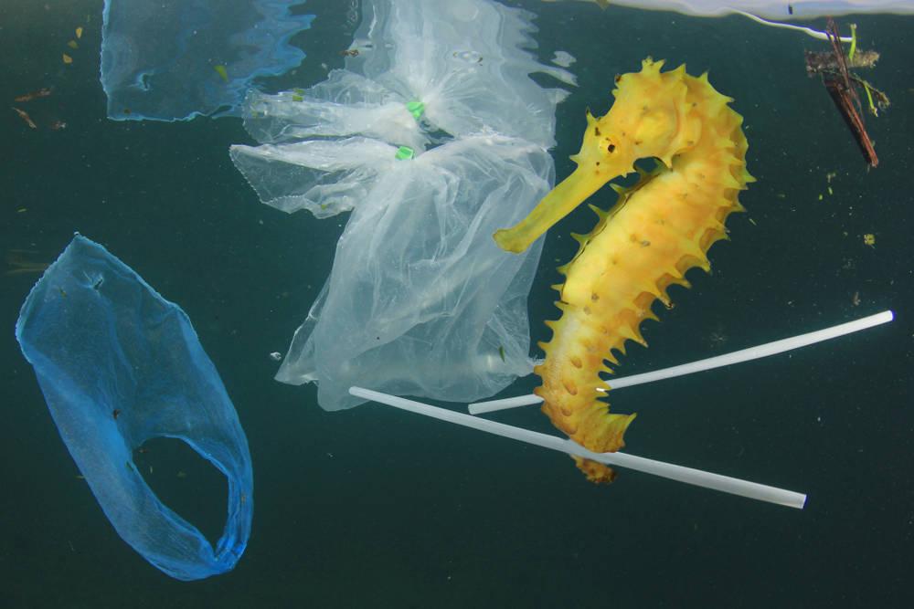 The interceptor: la barcaza que evitará que la basura llegue a los océanos