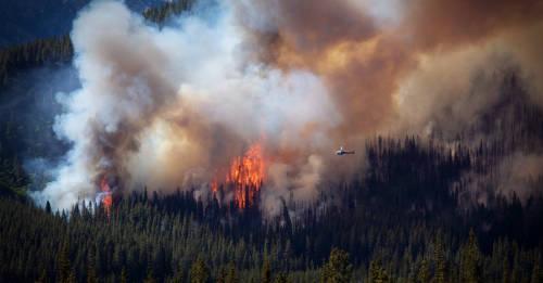 Amazonía, África, Ártico y Europa: fuegos que encienden el cambio climático