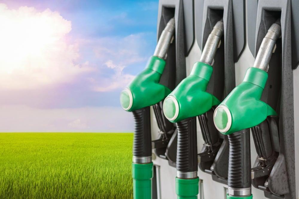 ¿Qué son los biocombustibles? Definición y ejemplos
