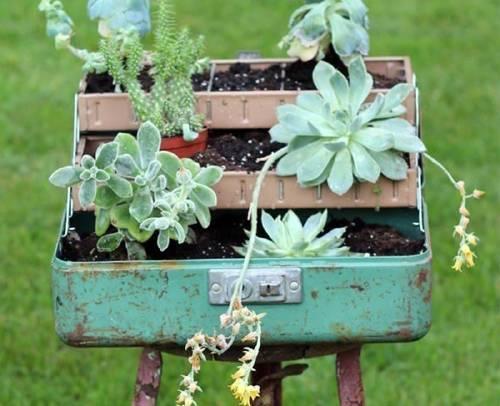 Cómo crear un jardín transportable en una caja de herramientas