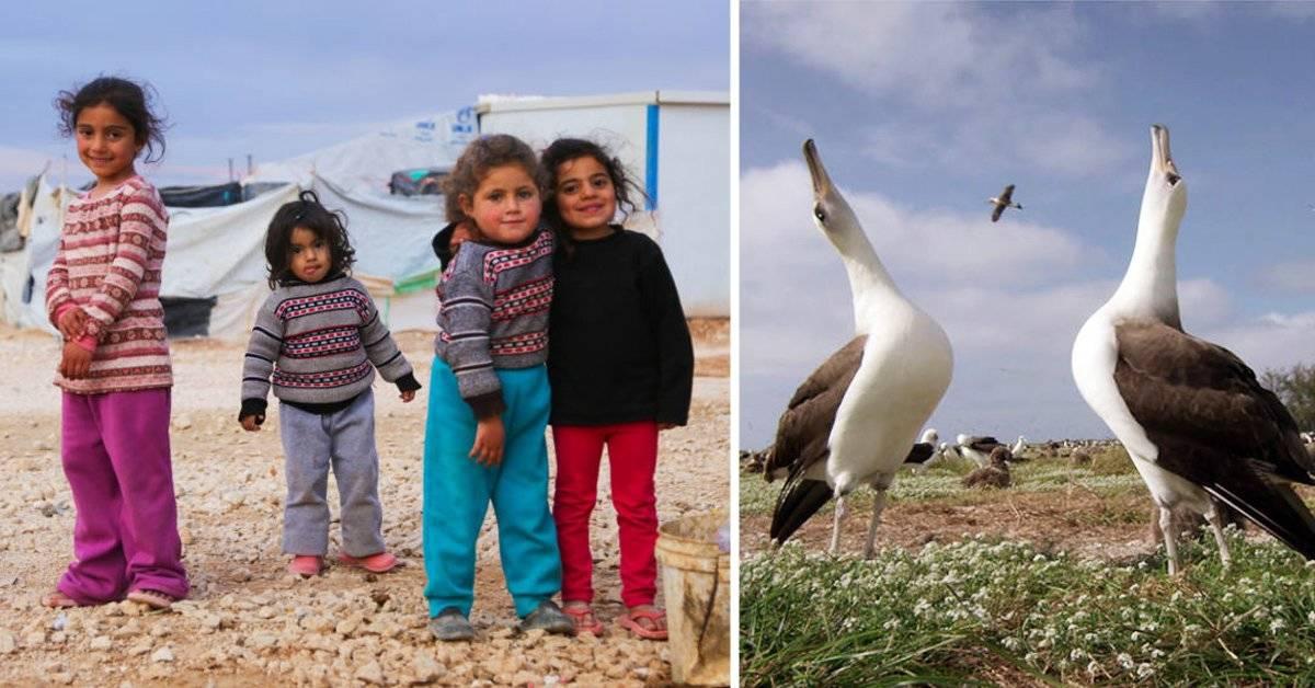 3 documentales con impacto para inspirarte a ser el cambio que quieres ver en el mundo