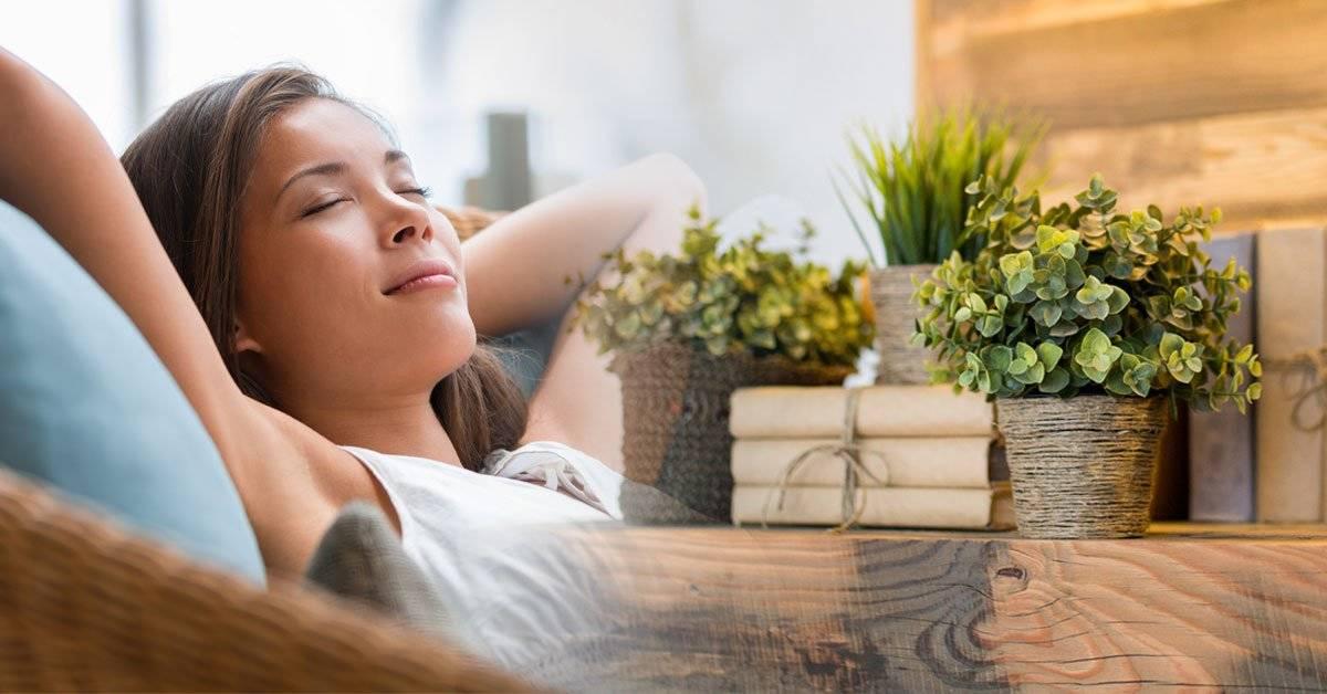 4 ideas para renovar tu hogar y hacerlo más sustentable